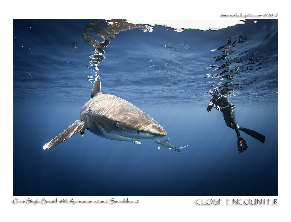 Close encounter 3.jpg