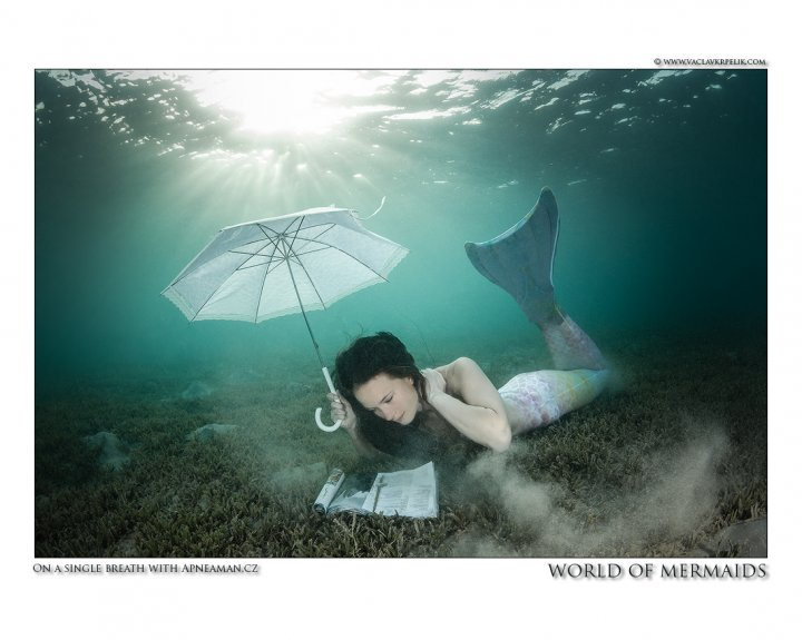 WORLD OF MERMAIDS.jpg